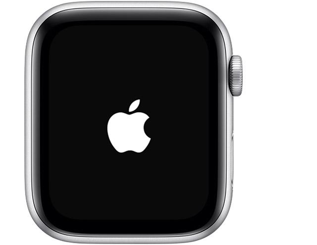 Apple logo screen.
