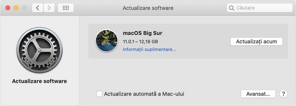 Preferințe privind actualizarea software-ului