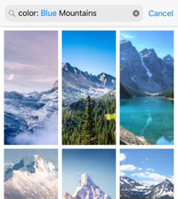 Background Search Results