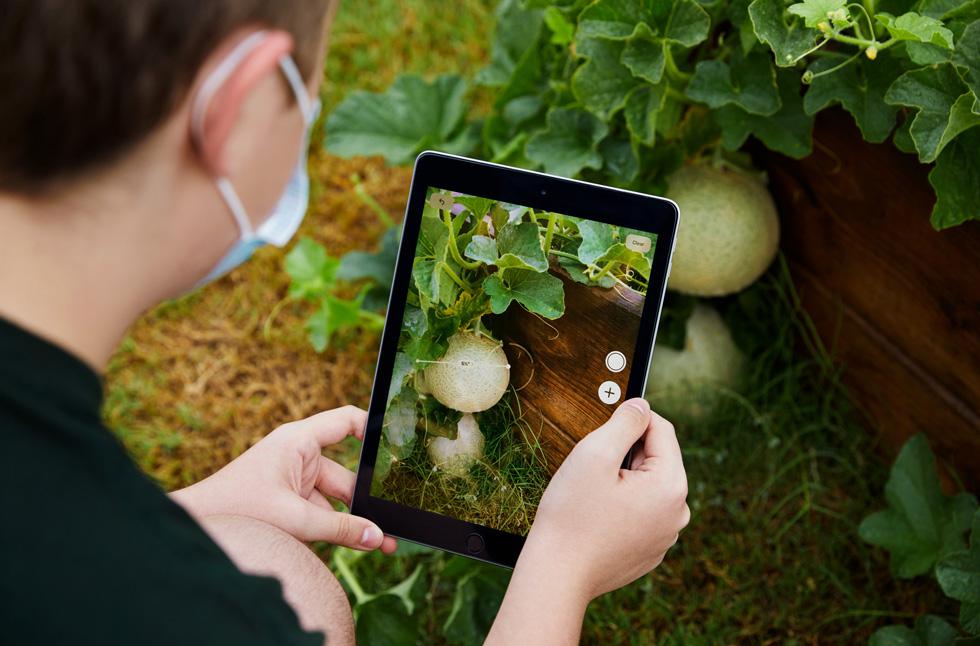 Stayton Slaughter using iPad.