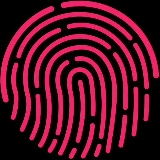 a graphical representation of using Touch ID for Apple Pay